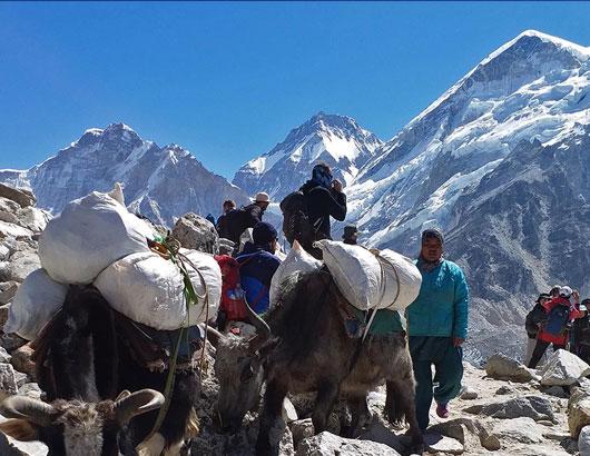 https://www.himalayanglacier.com/wp-content/uploads/2020/03/everest-trail-2.jpg
